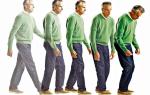 Болезнь Паркинсона — симптомы, диагностика и методы лечения