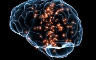 Сосудистая деменция — симптомы, лечение и прогноз